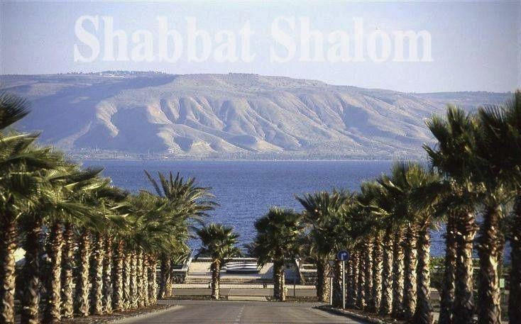 SHABBAT SHALOM ✡ שבת שלום