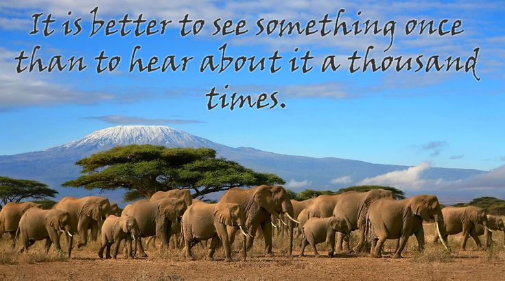 And best is to see it again and again, right? #Africa #Safari #travel #inspiration