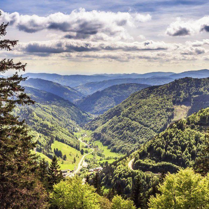 3 Tage Wellness und Erholung im Schwarzwald im 4-Sterne Hotel inklusive Schwarzwälder Frühstücksbuffet, 5-Gänge-Abendessen, Zugang zum Wellnesscenter und mehr ab 129 € - Urlaubsheld   Dein Urlaubsportal