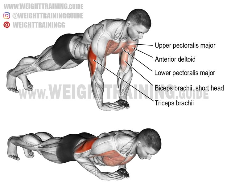 Diamond push-up. A compound bodyweight exercise. Target muscle: Triceps Brachii. Synergists: Lower Pectoralis Major, Upper Pectoralis Major, and Anterior Deltoid. Dynamic stabilizer: Biceps Brachii (short head only).