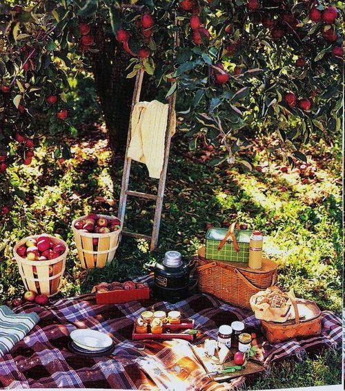 Dream Autumn Picnic