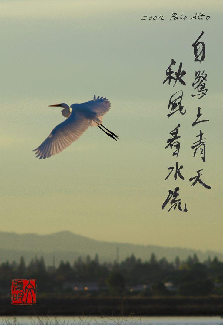 Best litt�rature et spiritualit� chinoises images on