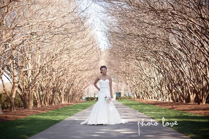 Arboretum and botanical garden dallas bridal photographer spring