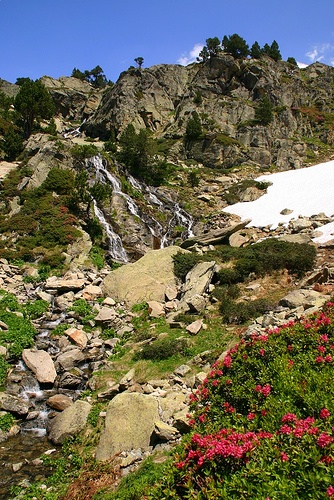Love this photo. Stream. Snow. Flowers. :) Andorra--tiny country you don't hear much about.