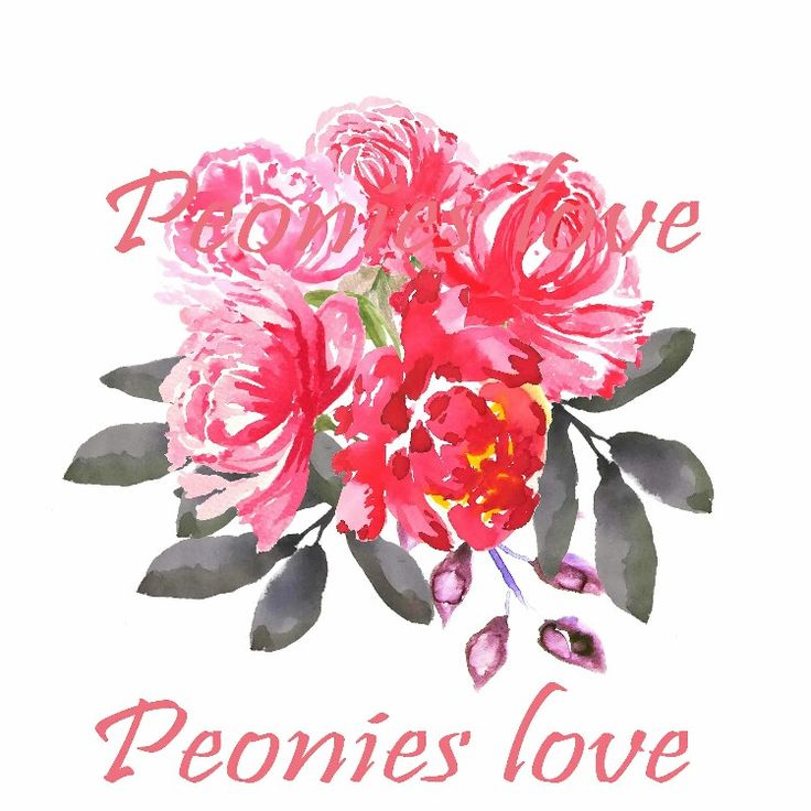 Excited to share the latest addition to my #etsy shop: Peonies leaves clip art watercolor png overlay wedding invitation peony arrangement clip art commercial use #supplies #pink #wedding #peoniesclipart #mothersday #leavesclipart #yes http://etsy.me/2ymksVQ