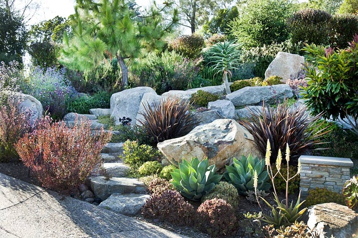 1000 images about septic tank landscape ideas on for Prairie style garden design