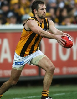 370 Best Images About Hawthorn Hawks On Pinterest West