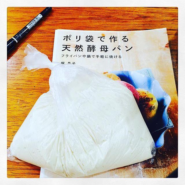 今日はキリン オフホワイトのはじめの一歩 ワークショップに参加中✨ #キリンオフホワイト #はじめの一歩 #天然酵母パン #ポリパン #happyDELI #ワークショップ #箱庭