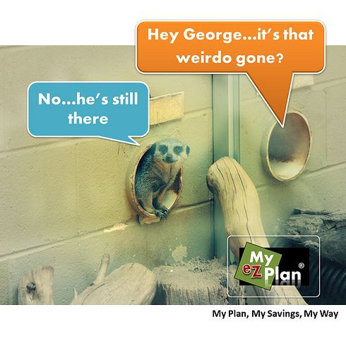 Bwah-hah-hah Lurid Animal | Save time and money on your next vacation. Go to myezplan.com and start planning your next getaway. It's free! -  | Impressive Engineering Design | Tour in San Diego in USA #cute #pets #naturelover #farm #animallovers