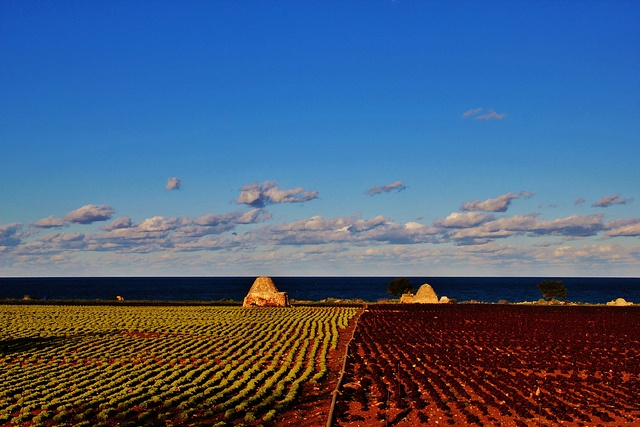 #MyPugliaExperience at @World Travel Market #WTM2012 - Colorful #Puglia by Francesco Sportelli
