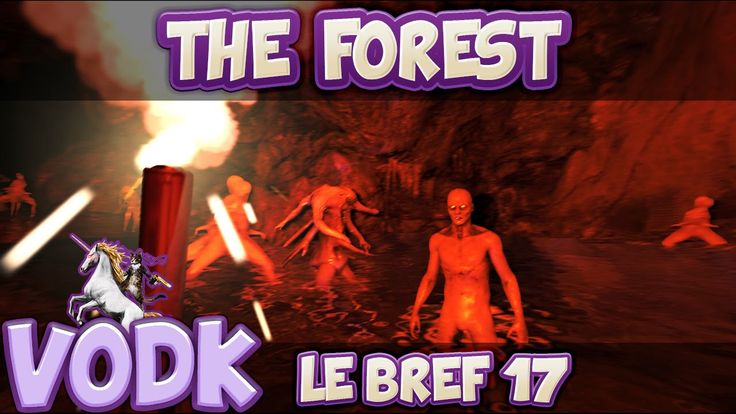 LE BREF ep17 : The Forest