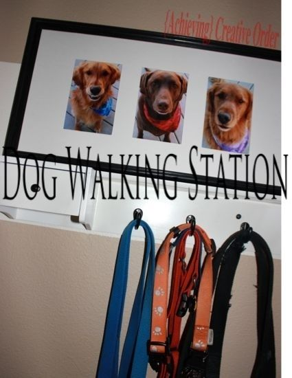 Make a dog-walking station for the entryway if you have more than one dog. | 38 Unexpectedly Brilliant Tips For Dog Owners