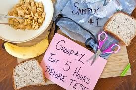 Image result for science fair ideas for 6th grade