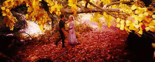 """""""Boas meninas não caçam coelhos, nem entram nas florestas sozinhas.  Mas desde criança, ele conseguia me fazer quebras as regras."""""""