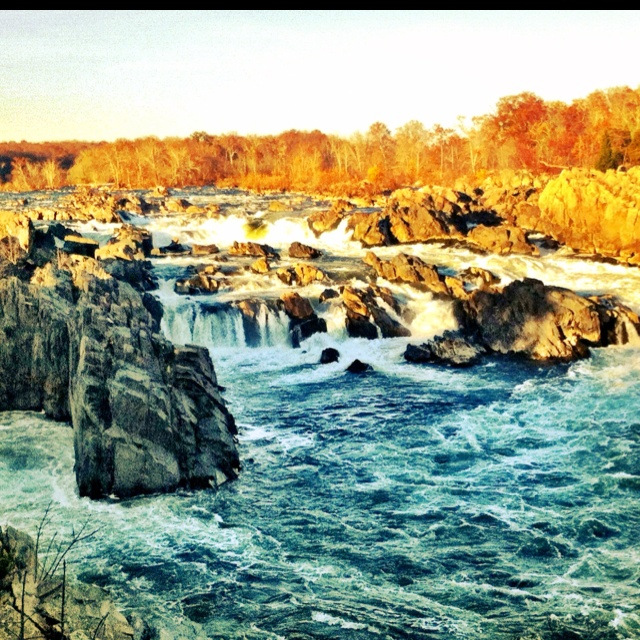 Great Falls, VA: