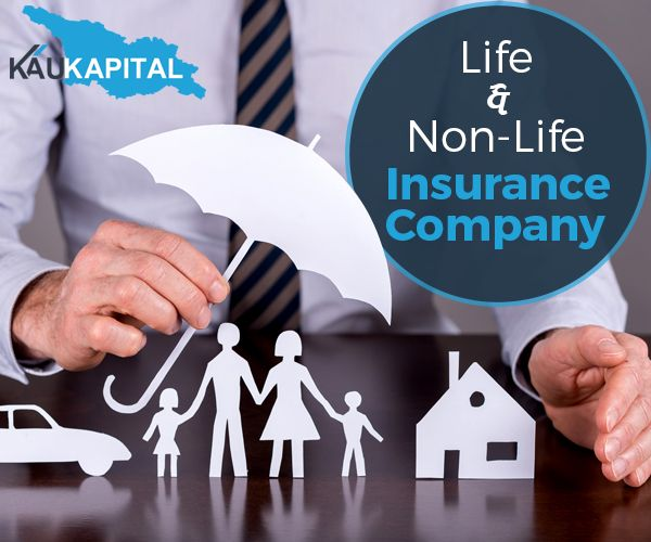 Financial Assistance For Insurance Companies Setup In Georgia