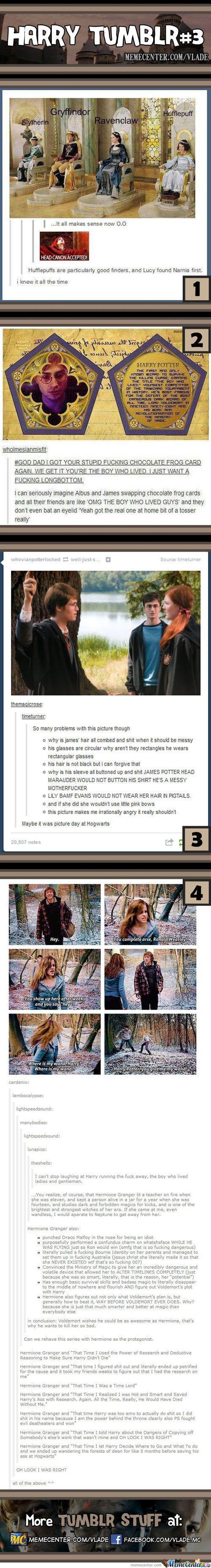 Harry Potter Tumblr - Meme Center