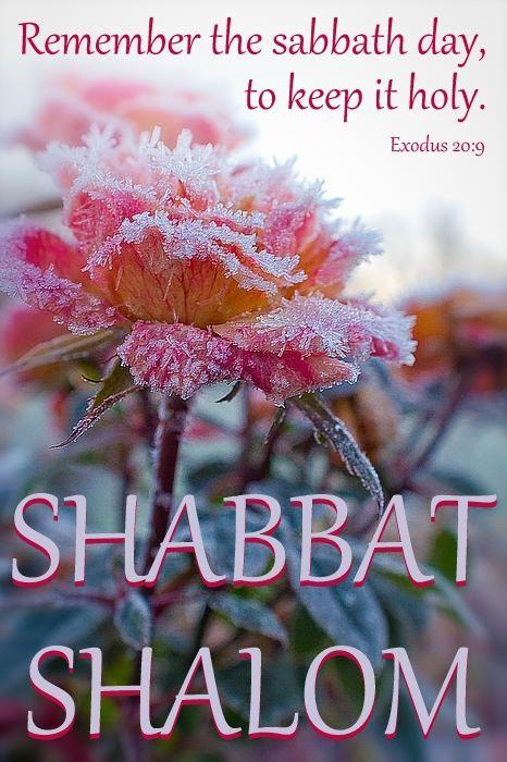feliz sabado http://www.singleseventhdayadventists.com/Shabbat Shalom Mishpicha…