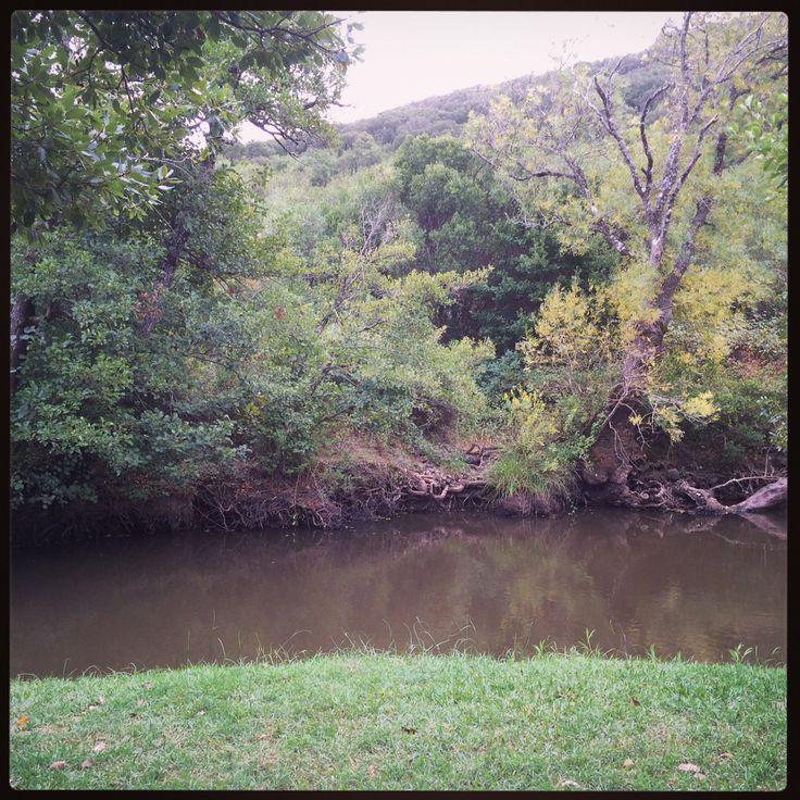 Las Lagunetas. Parque Natural de los Alcornocales.