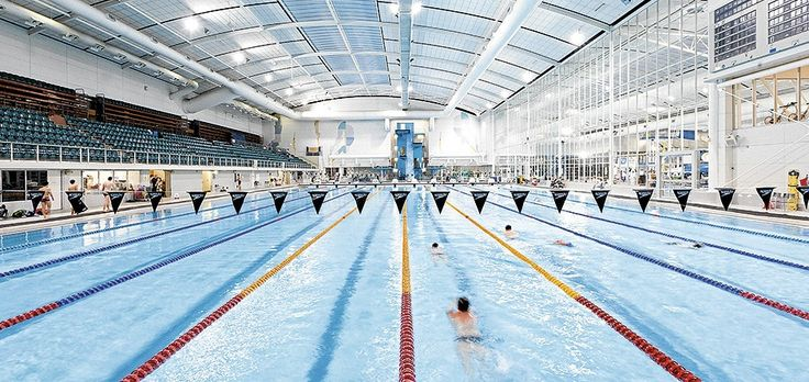 Swim _ Lap club at MSAC, Albert Park themelbournemag.com