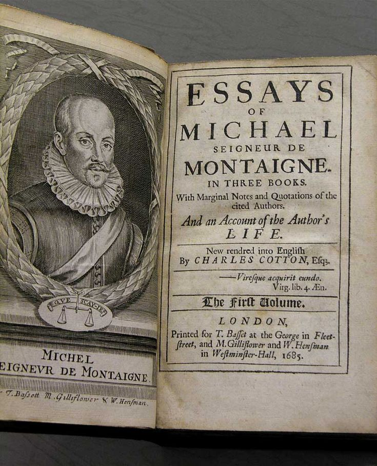 Michel de montaigne essays sparknotes