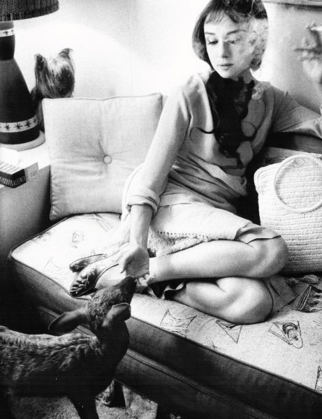 Audrey Hepburn. . . smoking. . . with a goat?
