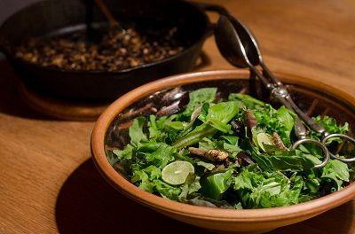 Hopping Thai Salad -  a healthy #EdibleInsect recipe featuring crickets or grasshoppers #Entomophagy