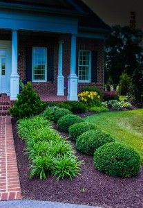Beautiful front yard round shrubs; spider plants to accent them; landscaping ideas