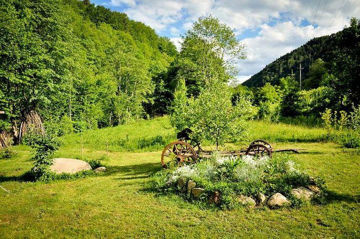 Despre casa rustica cu gradina langa Piatra Neamt, peisaj de vara