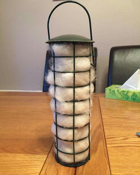 Collect brushed dog fur into a bag and put it into a bird feeder. The birds will take away this fur for their nests and chicks!  there is going to be some warm chicks this year