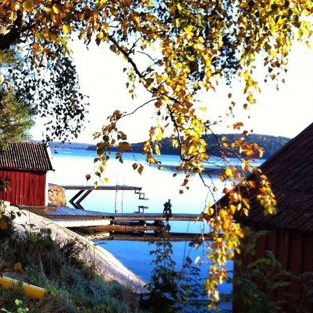 Autumn on the Orust island, 1 hour north of Gothenburg.