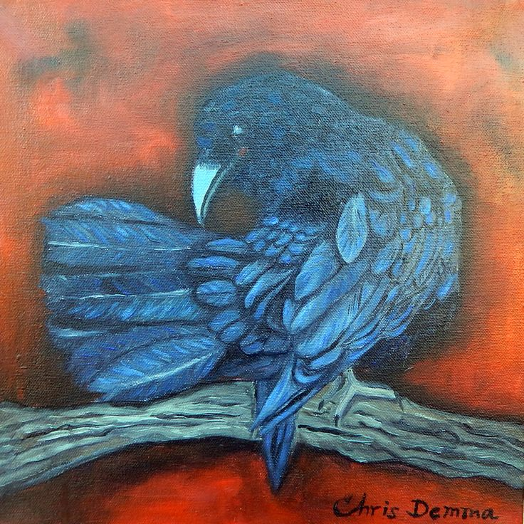 """Resting Raven  oil  12 x 12""""   available"""