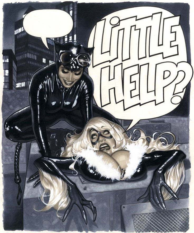 Illustrator having a little too much fun with his job, LOL (Catwoman and Black Cat by Adam Hughes )