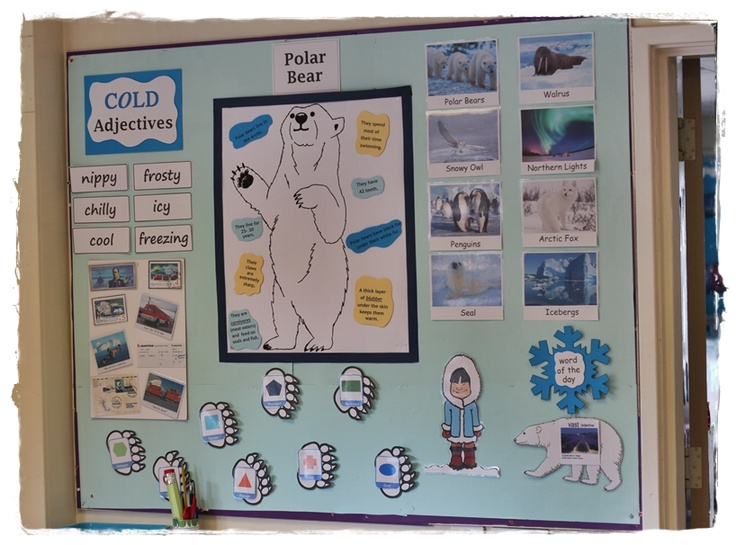 Our display / bulletin board for Polar Regions/ Antarctica
