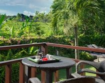 Bendega Nui - Ricefield view from the balcony.  #canggu #bali #balivillas #luxuryvillas