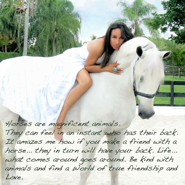 """Horses are magnificent animals. They can feel in an instant who has their back. It amazes me how if you make a friend with a horse... they in turn will love you back. Life... what comes around goes around. Be kind with animals and find a world of friendship & love."" ~Sabrina Barnett #Quote #Equine #Stallion #Bareback #Fashion #Empowerment"