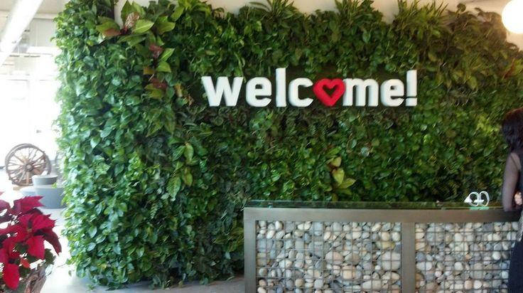 plant wall (https://www.facebook.com/creativeplantdesign) - vendor in SJ