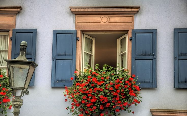 This shot is from my Freiburg trip in the last summer. I was amazed by how many flowers you can have in front of your window. It's really nice to see that so many windows are so rich decorated here in Freiburg. Technique: 3ex+-2EV HDR, f5.3, 66mm, iso 200, photomatics, For the story & technique behind this shot, please visit my blog: world.werner-kunz.com ( http://world.werner-kunz.com ) !!! creative commons: Feel free to use photos with credits and links. For commercial use, please contact…
