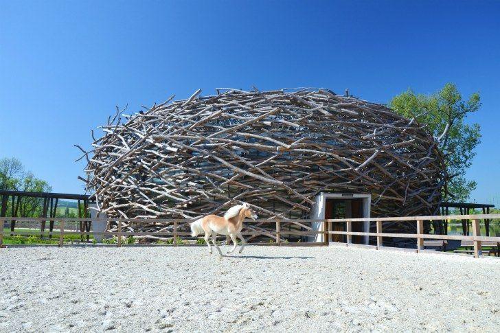 5-Stork-Nest-Farm-SGL-Projekt-3.jpg