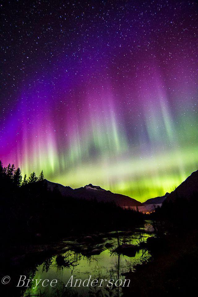 A phenomenal Aurora display in Juneau, Alaska overlooking the Mendenhall Glacier.
