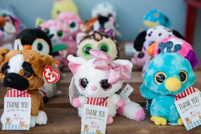 Adoptable pets from a Beanie Boos Pet Adoption Themed Birthday Party via Kara's Party Ideas | KarasPartyIdeas.com (21)