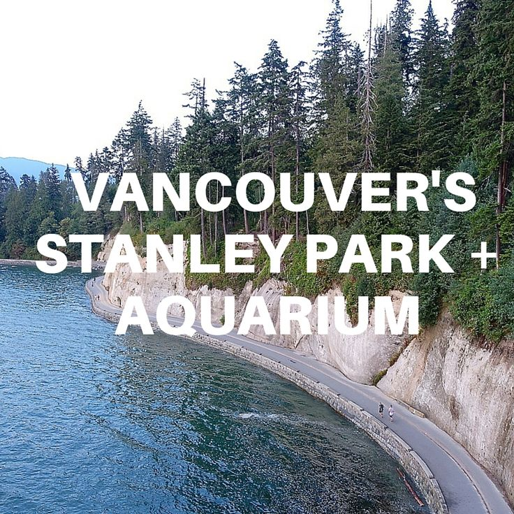 Vancouver, Canada Must Do: Bike Around Stanley Park And Visiting The Vancouver Aquarium