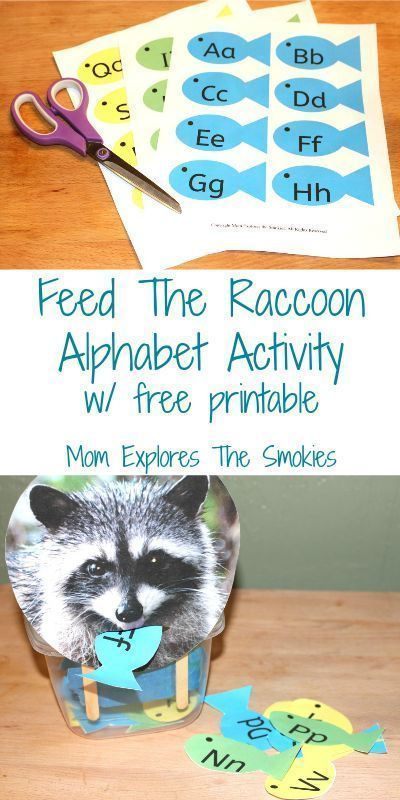 This fun learning alphabet activity for preschoolers teaches literacy, alphabet, and math skills. It can be used to help kids learn how to identify le…