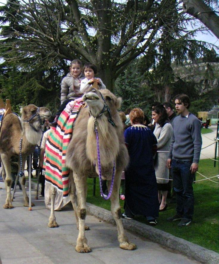 Morocco? No, Paris!  Jardin d'Acclimatation, Paris, France.