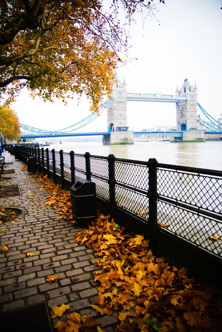 Top 10 Most Magnificent Perspectives Of London I Miss This Place Around  This Time Every