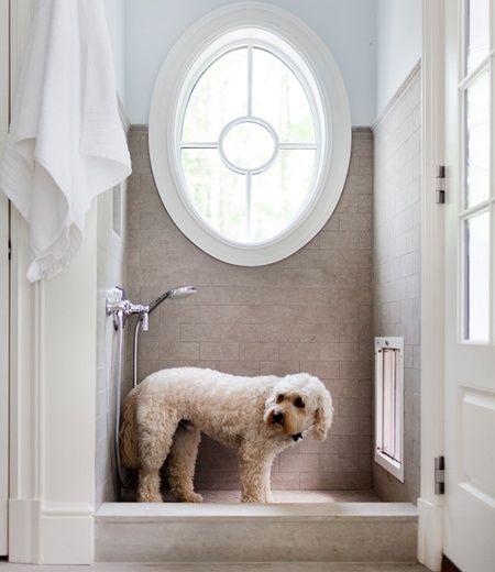201 Best Doggy Doors Images On Pinterest Doggy Doors Pet Door And