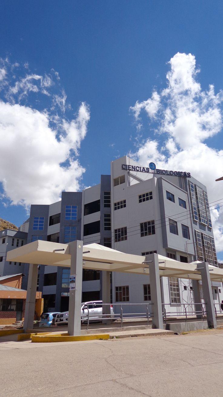 Facultad de Ciencias Biológicas de la Universidad Nacional del Altiplano Puno.  Foto: Octubre 2014