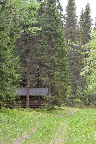 Koli National Park. www.koli.com.tr www.kolifabrikasi.com
