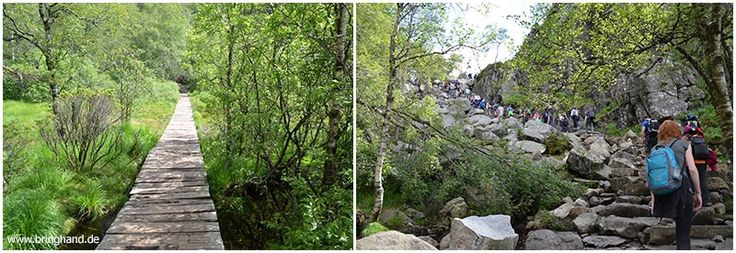 Wanderweg Lysefjord Preikestolen #Norwegen #Reisen #Backpacker #Camper #Roadtrip #Seen #Flüsse #Natur #Preikestolen #Wandern