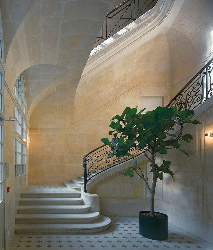 A neoclassical stairway at fashion brand Céline's first Parisian maison on rue Vivienne. Hôtel Colbert de Torcy.